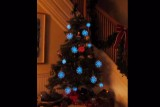 microbiology-christmas-tree-2
