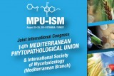 mpu-ism-turkey